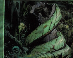 Magic the Gathering Prophecy Card: Mungha Wurm