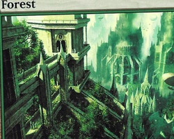 Magic the Gathering Ravnica: City of Guilds Card: Forest (a)