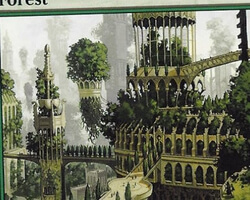 Magic the Gathering Ravnica: City of Guilds Card: Forest (b)