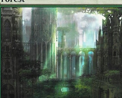 Magic the Gathering Ravnica: City of Guilds Card: Forest (c)