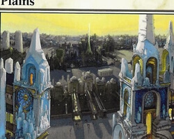 Magic the Gathering Ravnica: City of Guilds Card: Plains (d)