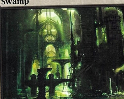 Magic the Gathering Ravnica: City of Guilds Card: Swamp (a)