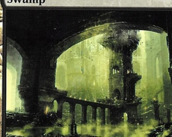 Magic the Gathering Ravnica: City of Guilds Card: Swamp (c)