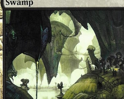 Magic the Gathering Ravnica: City of Guilds Card: Swamp (d)