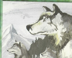 Magic the Gathering Revised Card: Aspect of Wolf