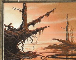 Magic the Gathering Starter 1999 Card: Swamp (d)