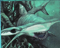 Magic the Gathering Stronghold Card: Hammerhead Shark