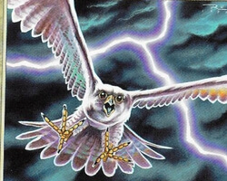 Magic the Gathering Stronghold Card: Skyshroud Falcon