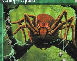 Magic the Gathering Tempest Card: Canopy Spider