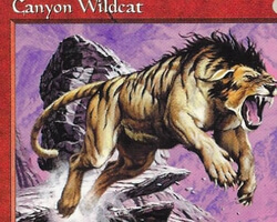 Magic the Gathering Tempest Card: Canyon Wildcat