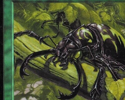 Magic the Gathering Tempest Card: Pincher Beetles