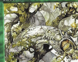 Magic the Gathering Tempest Card: Rootbreaker Wurm