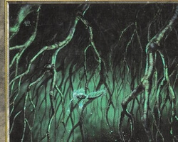 Magic the Gathering Tempest Card: Rootwater Depths