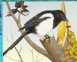Magic the Gathering Urza's Destiny Card: Thieving Magpie