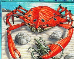 Magic the Gathering Urza's Legacy Card: King Crab