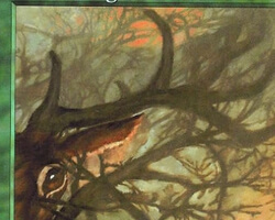 Magic the Gathering Urza's Saga Card: Hidden Stag