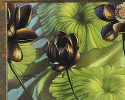 Magic the Gathering Urza's Saga Card: Lotus Blossom
